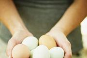 切记!吃完鸡蛋千万不要做这些事