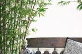 插花花艺风格有分东方式插花,跟西方式插花。算是各有千秋吧,但是不管怎样,其实在我们自己的家里,花艺的搭配应该不宜过于复杂,随意就好。点缀随心,一花一世界,让禅意与自然在室内展现。绿竹、陶罐、木榻,宛若一副水墨画,清幽雅致。(实习编辑 孟璇)