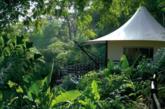 印度The Oberoi Vanyavilas酒店排名第四位,它是印度最奢华的丛林度假村,临近印度Ranthambhore国家公园老虎保护区。(实习编辑:谭婉仪)