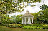 【22】新加坡植物园,新加坡