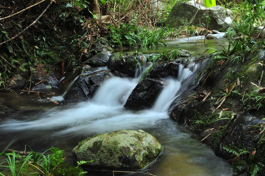 茶溪谷山中小溪