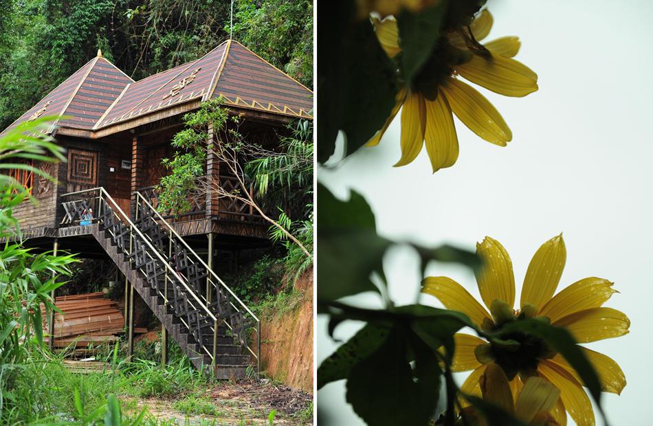 茶溪谷8种居住模式之休闲木屋