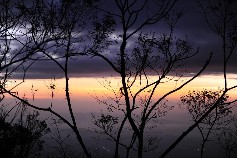 茶溪谷黄昏