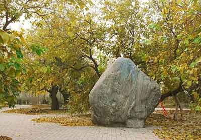 古黄河之魂 夏津黄河故道森林公园