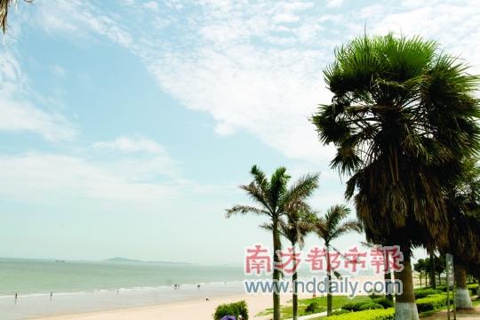 厦门( 酒店 )环岛路,海滩、椰子树、蓝天、白云……