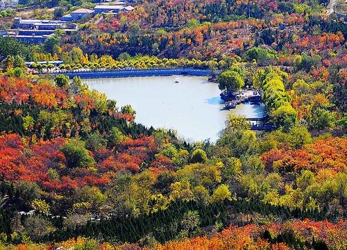 北宫森林公园; 红叶争艳 北京赏红最佳景点; 红叶争艳 北京赏红最佳