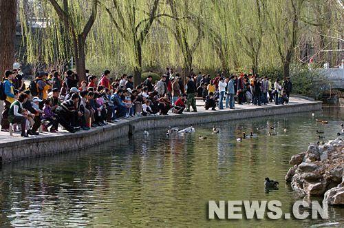 2011年2月14日 北京动物园黑导游抢地盘斗殴 持刀伤人者获刑1年 为了