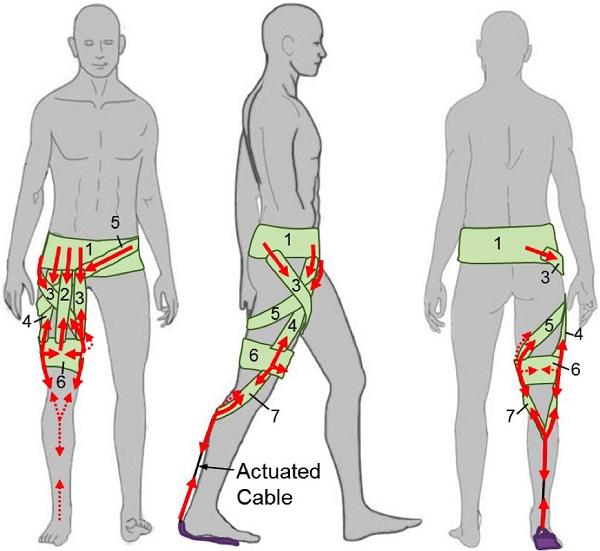但在一些特殊的场合,带有机械手臂的上半身外骨骼也能派上用场.图片