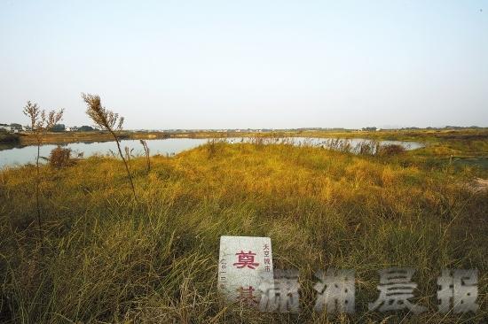 """龙8娱乐长沙838米""""世界第一高楼""""项目无进展 工地变渔场"""