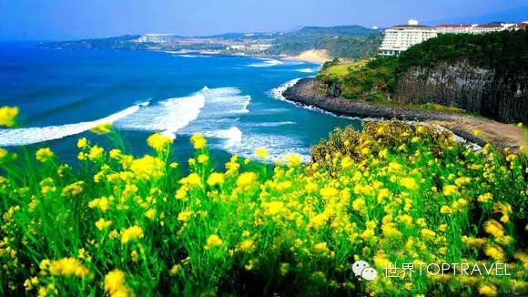 济州岛 5~6月份是韩国最美的季节,天气温和,山花烂漫,野花开遍,而