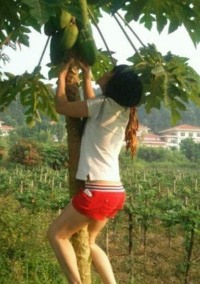 美女,我怎么觉得你是想要那棵树呢?