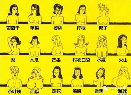 男人都是不是不会爱小乳房_不是乳房中国古人眼中女人性感中心3