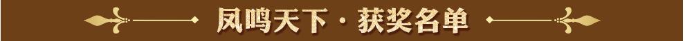 凤鸣天下获奖名单