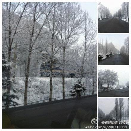 山西/昨天夜间开始,山西大部出现降雪,道路旁的树木上出现了树挂。...