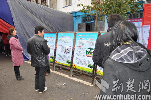 赶集的群众不时驻足观看新洲区院精心制作的法制宣传展板