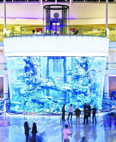 中线最大平面cad一个鱼缸是否世界v中线图片