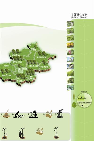 潮白河两侧和航空走廊绿化等城市森林景观 栽种树木流程示意图 挖坑