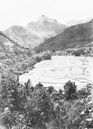想了解史图博走过的黎族村寨吗?
