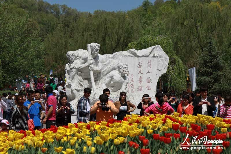乌鲁木齐市红山公园内,游人争相在郁金香花前留影