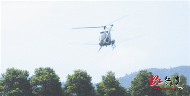 图为轻型直升飞机在凤凰山国家森林公园为喷药灭虫
