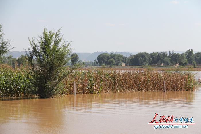 甘肃白银遭遇1981年以来黄河最大流量 政府 群众协力战洪峰