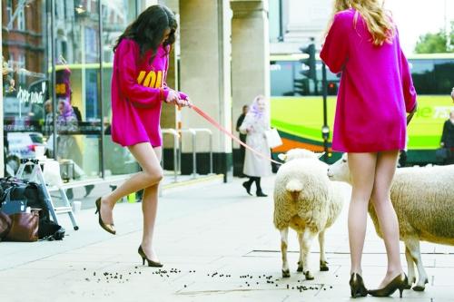 美女遛羊 新时尚?