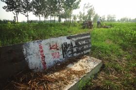 7月11日,河南省商水县,道路两旁公墓的立碑被人推倒。图/CFP