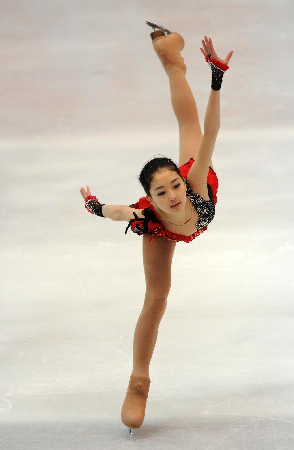 全国花样滑冰锦标赛赛况