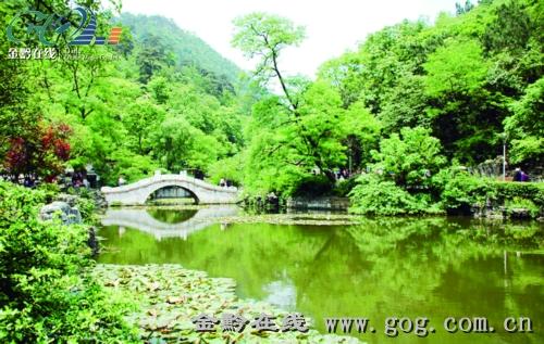 滚动新闻 > 正文   原标题:动物园搬不搬 黔灵猴怎么办 黔灵山公园