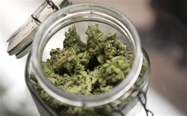 墨西哥毒贩出奇招 用加农炮将大麻打过美国边