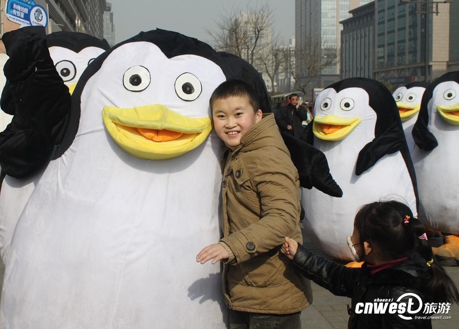 企鹅哥哥图片可爱的