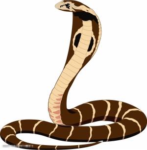 卡通黑曼巴蛇图