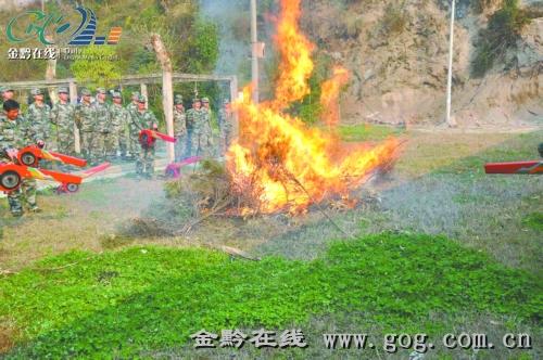 森林防火培训_资讯频道_凤凰网视频牌雕图片