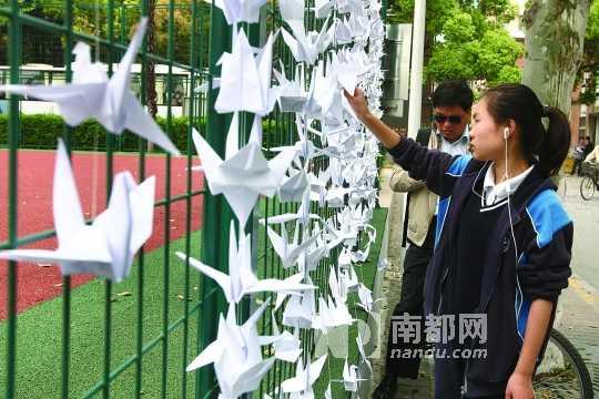 昨日,复旦大学校园内,众多师生挂起千纸鹤,表达哀思。 CFP图片