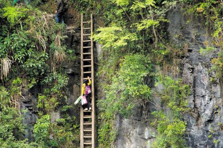求学天梯路