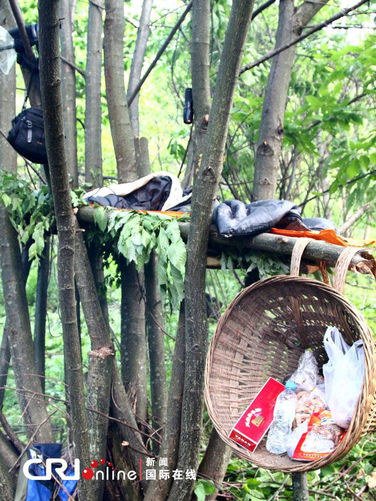 周正龙的树床。图片来源:江苏李根/CFP