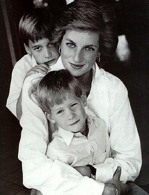 戴安娜王妃与威廉和哈里王子(资料图)-戴安娜王妃生前喜爱孩子 密