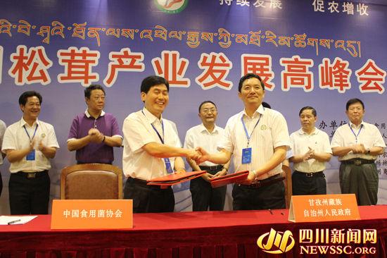 甘孜州人民政府与中国食用菌协会签订《食用菌产业发展战略合作协议