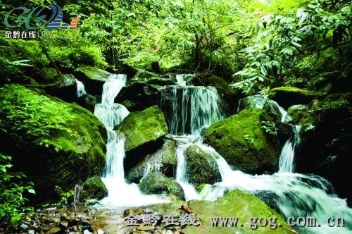 玉舍国家森林公园 高清图片