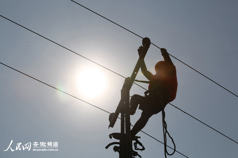 国家电网安徽砀山供电公司职工在烈日下工作.