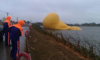 新屋乡昨晚停电,黄色小鸭漏气。来源:台湾《联合报》