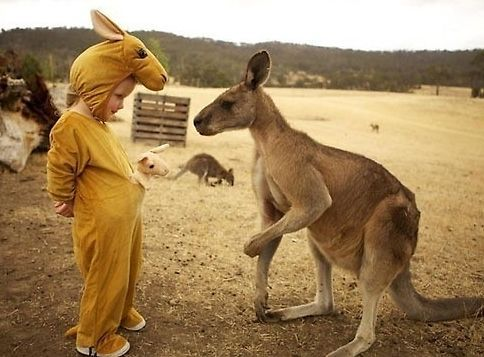 外国小孩与动物