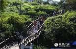 告别了苏东坡,凤凰全媒体采风团来到了本次活动的最后一站——昌江。登上七叉镇昌化江畔木棉观景台,游览昌化江畔的美景。