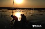 此时,已经是夕阳西下,鄱阳湖上的渔船都已经收工,只看到巡护员们的身影还在忙碌着。太阳接近地平线的时候,这一地带的天网被全部拆除。