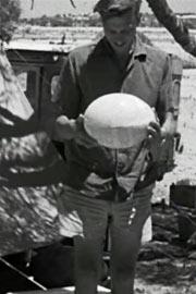 爱登堡的巨型蛋