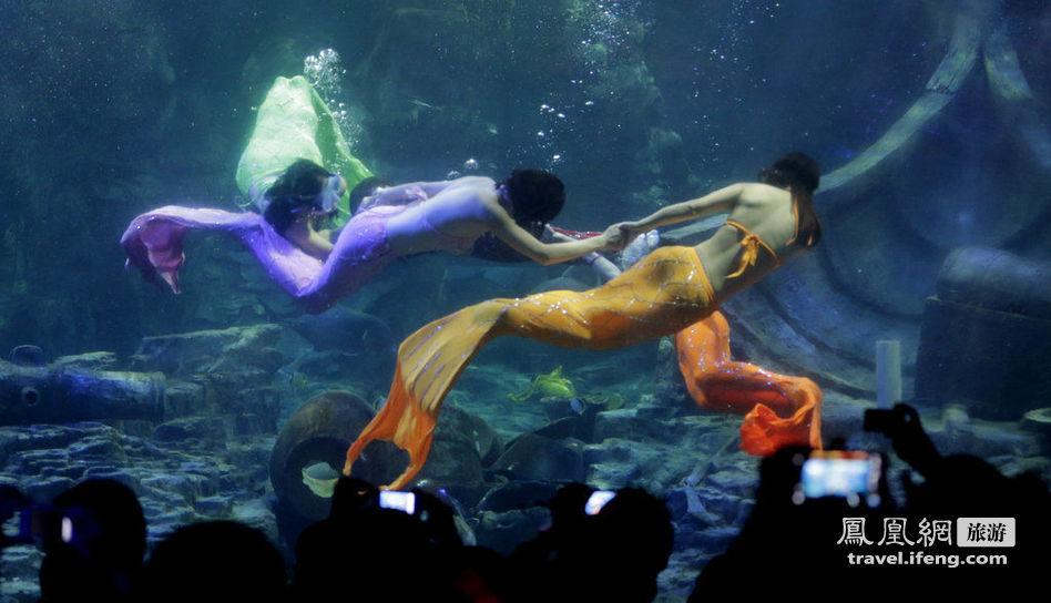 武汉海洋世界图片_东湖海洋世界美人鱼 _网络排行榜