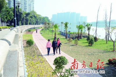 揭陽市區濕地公園景色怡人.涂英鵬 攝